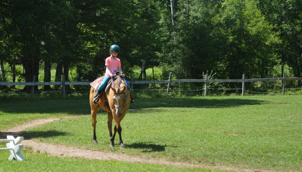 WeHaKee Horseback Riding