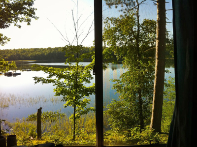 x Cabin view